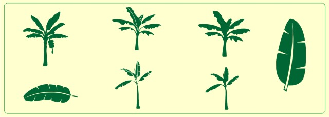 Clipart Banana Leaves